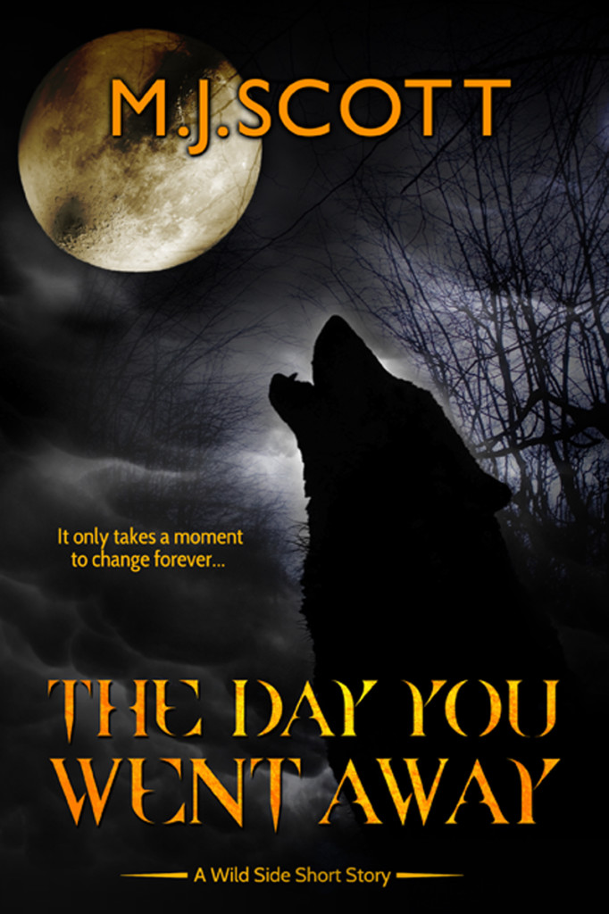 The Day You Went Away - A Wild Side short story