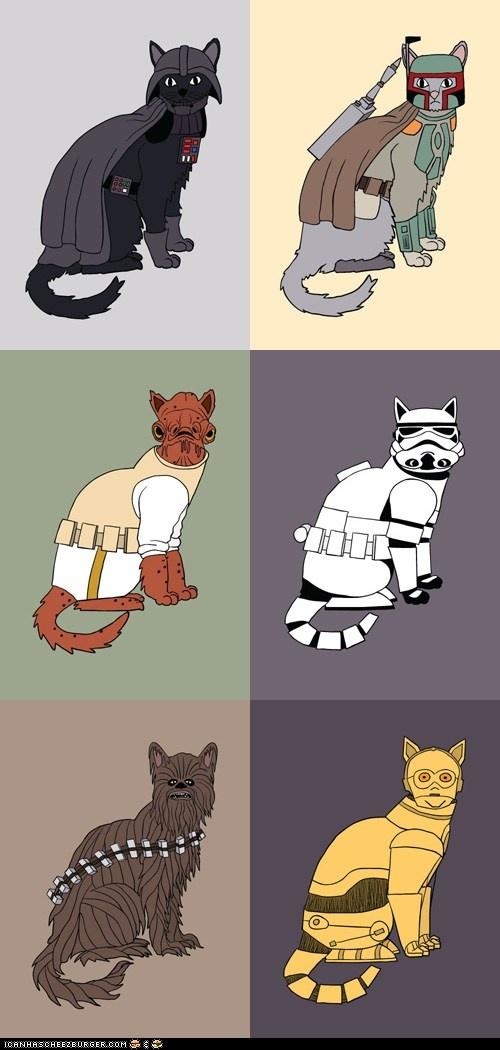 StarWarscats