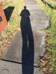 Shadowlegs