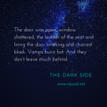 The Dark Side by M.J. Scott